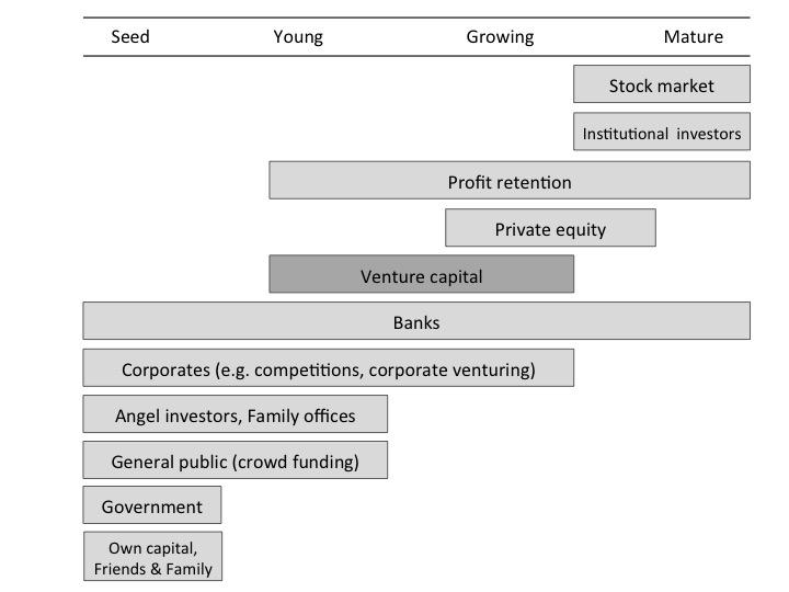 business sustainability essay